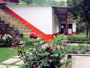 yoga-home-cottage