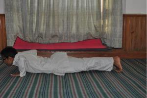 astanga namaskara