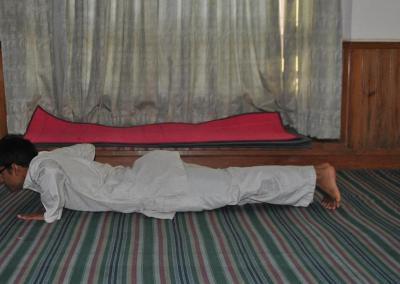 Astanga Namaskara Yoga Posture