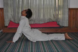 bhungasana-yoga-aasana