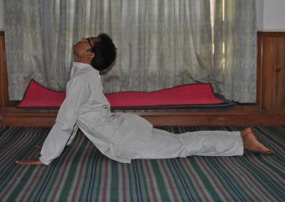 Bhungasana Yoga Posture