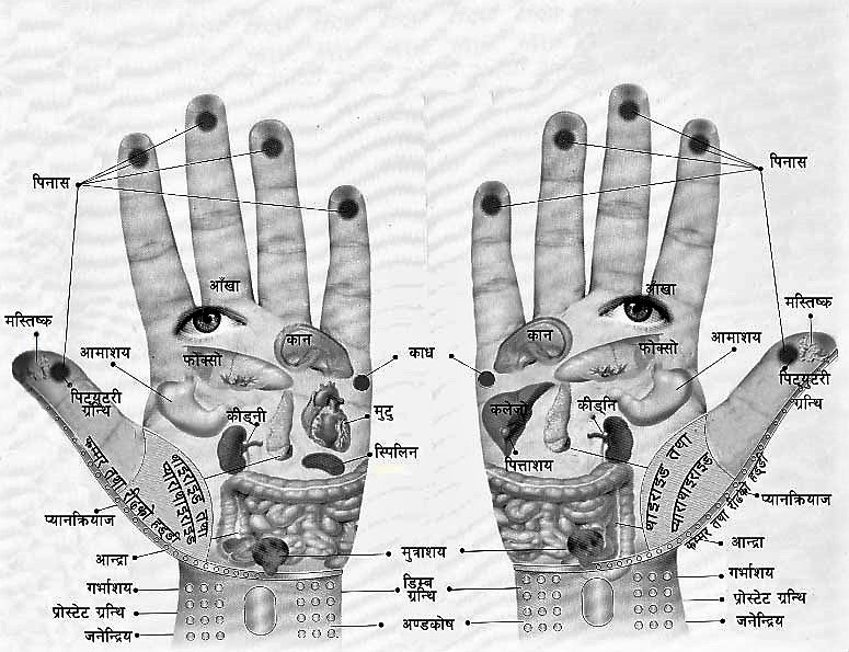 hand-reflexology-point