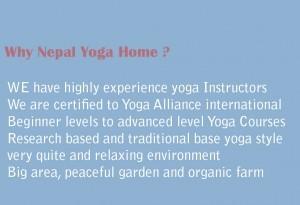 reason-to-choose-nepal-yoga-home