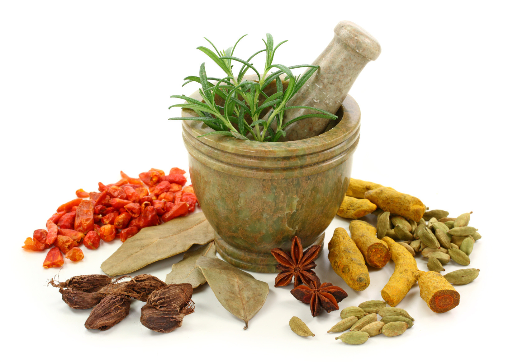 Ayurveda Introductory Course