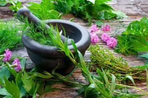 one month ayurveda and yoga detox course