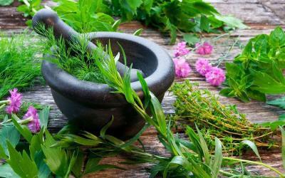 ayurveda: stress healing & body cleansing