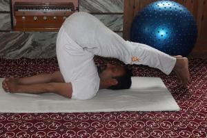 halasana-yoga