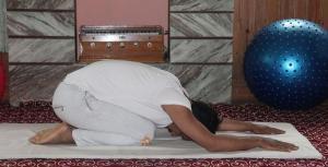 shashankasana-yoga