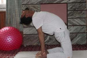 ustrasana-yoga