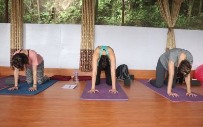 Relation between Yoga and Ayurveda