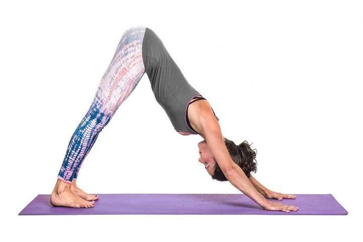adhomukha swanasana yoga