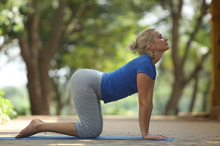 marjari-bitila yoga asana