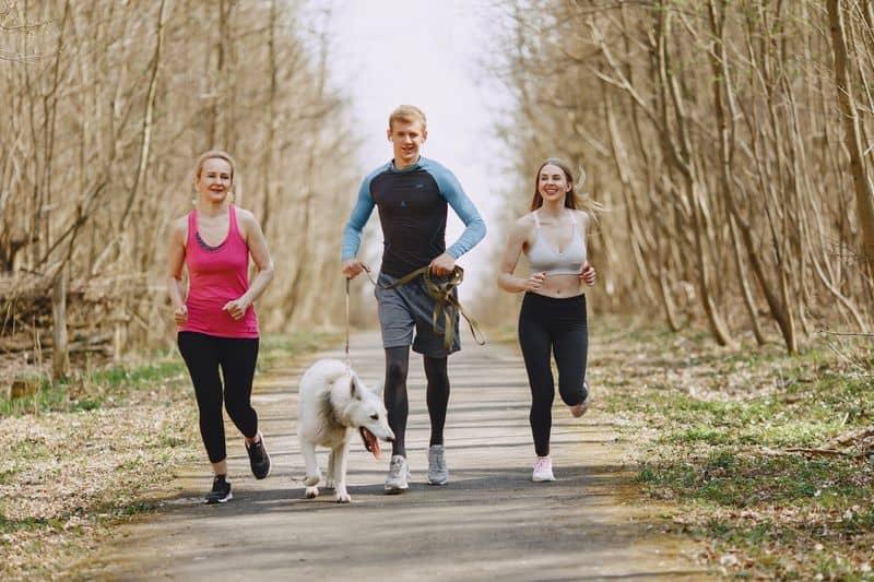 morning walk-a wellness strategy