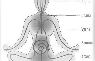 5 Prana in Human Body, Impact & Science | Pancha Prana Vayus in Yoga